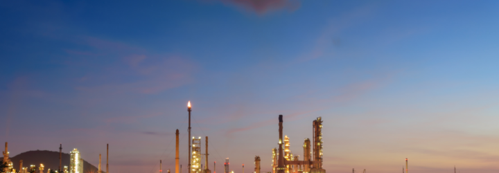 How are petrochemicals processed?